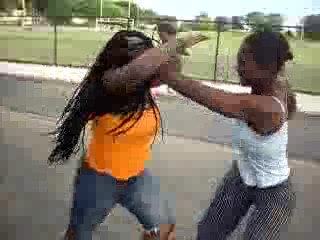 [Image: ghetto_black_girl_fight.jpg]
